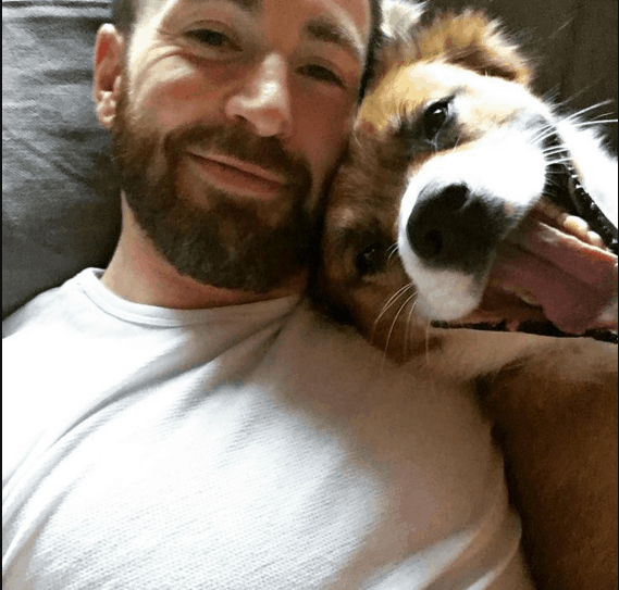 "Chris Evans Says ""When a dog does it, it's hilarious"""